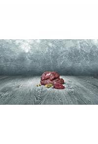 Straußenfleisch Wellfood 500gr